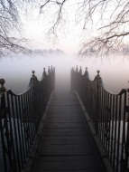 Fog and Bridge